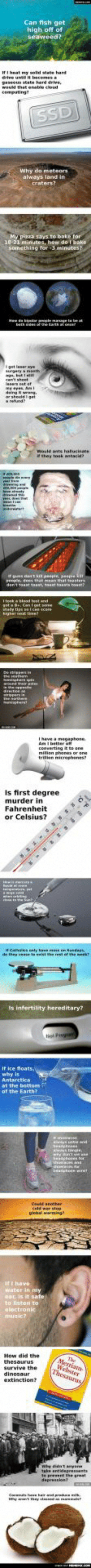 23 Science Questions That Push The Limits Of Human Stupidityomg-humor.tumblr.com: Can fish get  high off of  seaweed?  IFI heat my solid state hard  drtve until it becomesa  paseous state hand drive  would that enate cloud  cemputing  SSD  Why do meteors  always land in  মে ?  My pizza says to bake for  18-21 minutes, how do I bake  something for 3 minutes?  teth  or taat oncer  Tiastianer eye  urgery a masth  Cant shent  lasern ut ef  y yes A  arsheddget  rehund  Woule ants hallucina  ithey took antaci  andererert  uns donta people, pesple ar  reople, dees that mean that teasters  den't saant saast, taat bata btosst  Iteek d test ad  geta Be. Can i pet soe  ady tipe can Care  igert tie  wounethe e  rpers  terst  Ihave a megphone  Ant better o  converting to ene  milion phone or ene  trlen mierophenest  Is first degree  murder in  Fahrenheit  or Celsius?  Ca s nty ka enend  de they ceseetheref e  Is infertility hereditary?  If ice floats.  why is  Antarctica  at the bottom  of the Earth?  atetece ere  Could anonher  celd wer stop  giobal warming  Iti have  water in my  car, is it safe  to listen to  alectronic  music?  How did the  thesaurus  Merriam  The  Webster  Thesaurus  survive the  dinosaur  extinction?  why entnyen  Tampona  take antidepressent  preet the grest  depession  C hae harpr .  y thy st aer 23 Science Questions That Push The Limits Of Human Stupidityomg-humor.tumblr.com