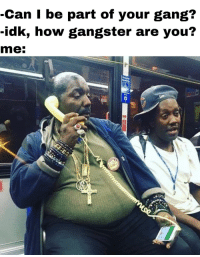 Memes, Gang, and Http: -Can I be part of your gang?  -idk, how gangster are you?  me: that's how mafia works via /r/memes http://bit.ly/2CLNayX