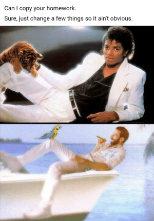 Michael Jackson, Reddit, and Michael: Can I copy your homework.  Sure, just change a few things so it ain't obvious. Michael Jackson totally stole my moves