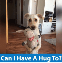 Memes, 🤖, and Can: Can I Have A Hug To? Sometimes we all just need a hug 😘 via JukinMedia