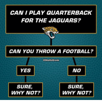 I'm convinced Blake Bortles is left-handed and he doesn't know it yet. 🤣  Credit - ghettogronk: CAN I PLAY QUARTERBACK  FOR THE JAGUARS?  CAN YOU THROW A FOOTBALL?  @GhettoGronk  YES  NO  SURE,  WHY NOT?  SURE,  WHY NOT? I'm convinced Blake Bortles is left-handed and he doesn't know it yet. 🤣  Credit - ghettogronk