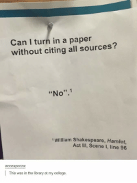 "College, Hamlet, and Shakespeare: Can I turn in a paper  without citing all sources?  ""No"".1  1 William Shakespeare, Hamlet,  Act III, Scene I, line 96  woozapooza  This was in the library at my college. Fair point, teach."
