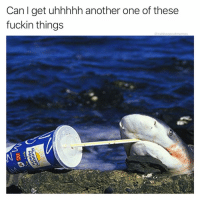 Another One, Ass, and Fish: Can l get uhhhhh another one of these  fuckin things  @cabbagecatmemes Anytime u silly ass fish
