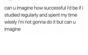 meirl by PlasmaRiver MORE MEMES: can u imagine how successful i'd be if i  studied regularly and spent my time  wisely i'm not gonna do it but can u  imagine meirl by PlasmaRiver MORE MEMES