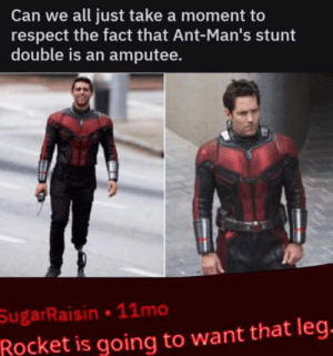 Butt, Respect, and Thanos: Can we all just take a moment to  respect the fact that Ant-Man's stunt  double is an amputee.  ジ  SugarRaisin 11mo  Rocket is going to want that leg how did he fit the prosthetic leg in thanos butt?