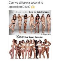 Dove, Love, and Memes: Can we all take a second to  appreciate Dove?  VICTORIA'S SECRET Love My Body Campaign  IG doityourself.s  Dove Real Beauty Campaign  DOVe. Real Beauty Campaign