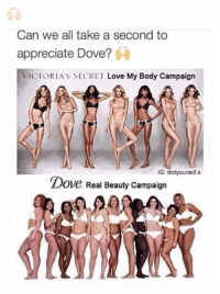 Dove, Love, and Memes: Can we all take a second to  appreciate Dove?  VICTORIA'S SECRET Love My Body Campaign  IG: doityourself.s  Dove Real Beauty Campaign