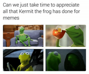 Gif, Kermit the Frog, and Memes: Can we just take time to appreciate  all that Kermit the frog has done for  memes blu-canary:  otherworldlypredator:  tumblin-monkeys:  notclickbait:  72virginoliveoil:  notclickbait:  72virginoliveoil:  notclickbait:  lets not forget this gem  cant believe we're leaving out this and more importantly this  interesting how you forgot and  ok but and  hmmm and perhaps  and these ones too  I'm not sure how you managed to forget this gem: