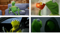CAN WE JUST TAKE TIME TO APPRECIATE ALL THAT KERMIT THE FROG HAS DONE FOR MEMES
