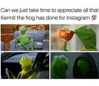 You the best tbh❤️: Can we just take time to appreciate all that  Kermit the frog has done for Instagram  aa You the best tbh❤️