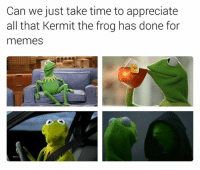 Can we just take time to appreciate  all that Kermit the frog has done for  memes Put some respeck on it