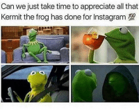 Can we just take time to appreciate all that  Kermit the frog has done for Instagram The real MVP of Instagram 🐸😭😂 Kermit WSHH