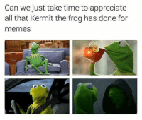 frog meme: Can we just take time to appreciate  all that Kermit the frog has done for  memes