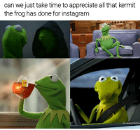 Put some respek on this meme gawd. 1 like = 1 respek: can we just take time to appreciate all that kermit  the frog has done for instagram Put some respek on this meme gawd. 1 like = 1 respek