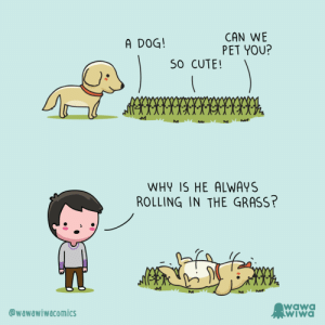 [OC] Mystery solved: CAN WE  PET YOU?  A DOG!  S0 CUTE!  WHY IS HE ALWAYS  ROLLING IN THE GRASS?  M  wawa  WIWA  @wawawiwacomics [OC] Mystery solved