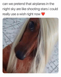 Memes, Party, and Shit: can we pretend that airplanes in the  night sky are like shooting stars i could  really use a wish right now play that shit 💫💫💫 [twitter: garden_party_69]