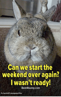 Memes, Flickr, and Photography: Can we start the  weekend over again?  I wasn't ready!  Best4bunny.com  Pic: Sunchild 57 photography Flickr Great idea! www.best4bunny.com