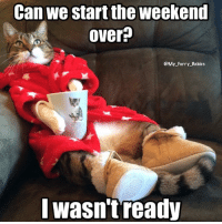 Memes, The Weekend, and 🤖: Can we start the weekend  over  My Furry Babies  wasntready I want a do over!!! Joey kitty from My Furry Babiesry