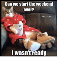 The Weekend, Furry, and Weekend: Can we start the weekend  over  SMY Furry Babies  I wasn't ready