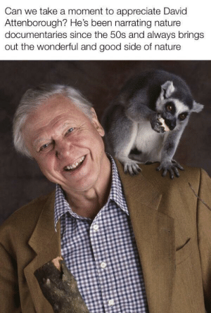 Appreciate, Good, and Nature: Can we take a moment to appreciate David  Attenborough? He's been narrating nature  documentaries since the 50s and always brings  out the wonderful and good side of nature He's one of the wholesome people that doesn't really get noticed as much as others