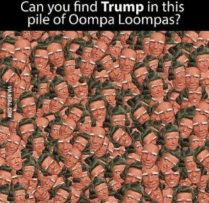 Can you?: Can you find Trump in this  pile of Oompa Loompas? Can you?