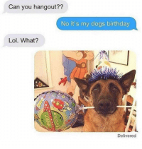 Birthday, Dogs, and Lol: Can you hangout??  No it's my dogs birthday  Lol. What?  Delivered Remember the important suff