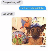 My Dogs Birthday: Can you hangout??  No it's my dogs birthday  Lol. What?  Delivered