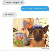 Birthday, Dogs, and Lol: Can you hangout??  No it's my dogs birthday  Lol. What?  Delivered Birthday party