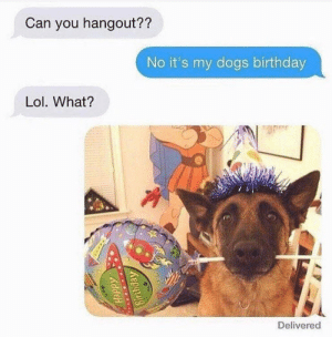 Priorities by Vinicusv FOLLOW 4 MORE MEMES.: Can you hangout??  No it's my dogs birthday  Lol. What?  Delivered  Happy  Birthday Priorities by Vinicusv FOLLOW 4 MORE MEMES.