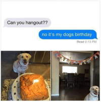 My Dogs Birthday: Can you hangout??  no it's my dogs birthday  Read 2:13 PM