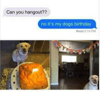 Memes, 🤖, and Sticks: Can you hangout??  no it's my dogs birthday  Read 2:13 PM Sticking to your excuse like a boss!
