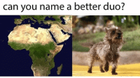 Africa by Toto Memes: can you name a better duo? Africa by Toto Memes