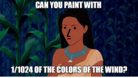 Memes, Paint, and 🤖: CAN YOU PAINT WITH  1/1024 OF THE COLORS OF THE WIND? (GC)