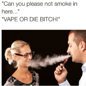 "Bitch, Bruh, and Vape: ""Can you please not smoke in  here...""  VAPE OR DIE BITCH!"" You tell her bruh"
