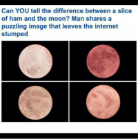 I think the bottom right is ham? Top right is moon? Fack....: Can YOU tell the difference between a slice  of ham and the moon? Man shares a  puzzling image that leaves the internet  stumped I think the bottom right is ham? Top right is moon? Fack....