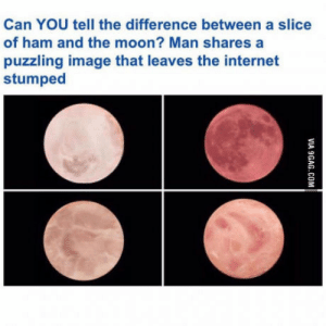 Internet, Image, and Moon: Can YOU tell the difference between a slice  of ham and the moon? Man shares a  puzzling image that leaves the internet  stumped This is confusing