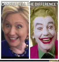 Funny Conservative Memes: CAN YOU TELL THE DIFFERENCE?  funny  Co
