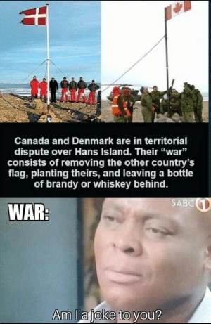 "Theirs: Canada and Denmark are in territorial  dispute over Hans Island. Their ""war""  consists of removing the other country's  flag, planting theirs, and leaving a bottle  of brandy or whis key behind.  SABC  WAR:  Am lajoke to you?"