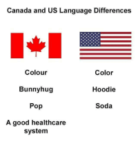 ^^: Canada and US Language Differences  Colour  Bunnyhug  Pop  A good healthcare  Color  Hoodie  Soda  system ^^