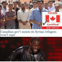 Canada  Certified  NON-RAPIST  Canadian gov't insists its Syrian refugees  won't rape ______________________________________________ Backup Account: @filthyfrankmemez _________________________________________ dankmemes meme memes immortalmemes filthyfrank jetfuelcantmeltsteelbeams triggered filthyfrankmemes