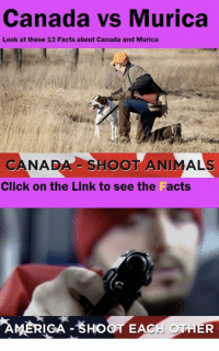 Read the full story here 👉 http://1jux.de/-cWfj: Canada vs Murica  Look at these 13 Facts about Canada and Murica  CANADO  SHOOT ANIMAL  Click on the Link to see the Facts  AMT RIGA  EA  OTHER Read the full story here 👉 http://1jux.de/-cWfj