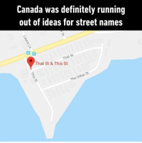 "Dank, Definitely, and Canada: Canada was definitely running  out of ideas for street names  That St  That St & This St  St  Other  The ""Where do you live?"" ""That Street."" ""This street?"" ""No, That Street."""