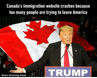 America, Facts, and Memes: Canada's immigration website crashes because  too many people are trying to leave America  TRUMP  Some Amazing Facts