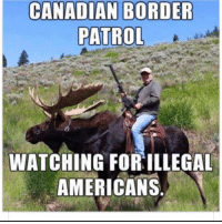 Memes, Canadian, and 🤖: CANADIAN BORDER  PATROL  WATCHING FOR ILLEGAL  AMERICANS Tag that American 😂