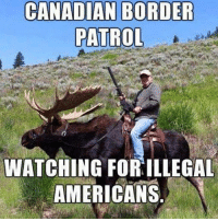 Memes, Canadian, and 🤖: CANADIAN BORDER  PATROL  WATCHING FOR ILLEGAL  AMERICANS This should be fun