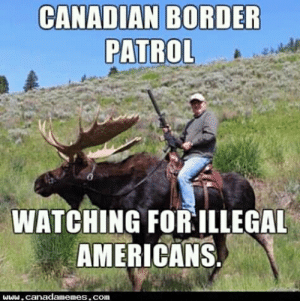 Illegal Americans