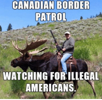 Memes, Canadian, and 🤖: CANADIAN BORDER  PATROL  WATCHING FOR ILLEGAL  AMERICANS ~ GATSBY