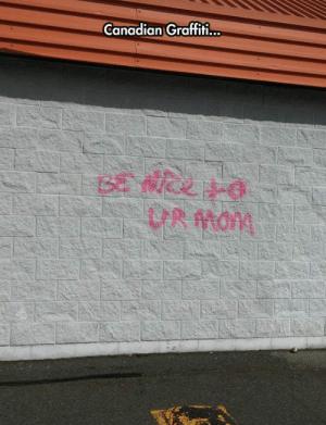 Graffiti, Tumblr, and Blog: Canadian Graffiti.  UR Mam srsfunny:Canadian Vandalism Is Getting Out Of Hand