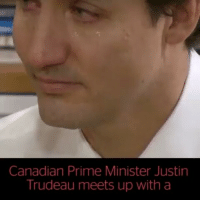 Justin Trudeau reunited with Syrian refugees he welcomed to Canada and had an emotional response: Canadian Prime Minister Justin  Trudeau meets up with a Justin Trudeau reunited with Syrian refugees he welcomed to Canada and had an emotional response