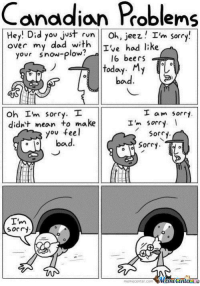 I'm sorry From Completely Serious Comics: Canadian Problems  Hey! Did you just run Oh, Jeez  I'm sorry!  over my dad with  Ive had like  your snow-plow?  16 beers  MY  bad  Oh m sorry. T  I'  I am sorry  didn't mean to make  I'm  Sorry  you feel  Sorry  bad  Sorry  Sorry  enter  memecenter com I'm sorry From Completely Serious Comics